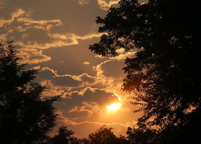 Sunset Greeting Card featuring the photograph Summer Sunset 2 by Liz Vernand