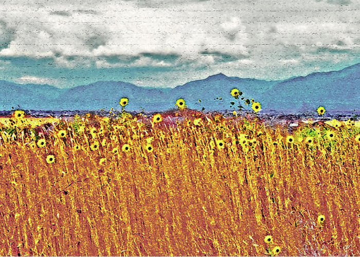 Fields Greeting Card featuring the photograph Sunflower Field 1 by Steve Ohlsen