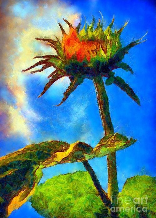 Sunflower Greeting Card featuring the photograph Sunflower - It's A Glorious Day She Said. by Janine Riley