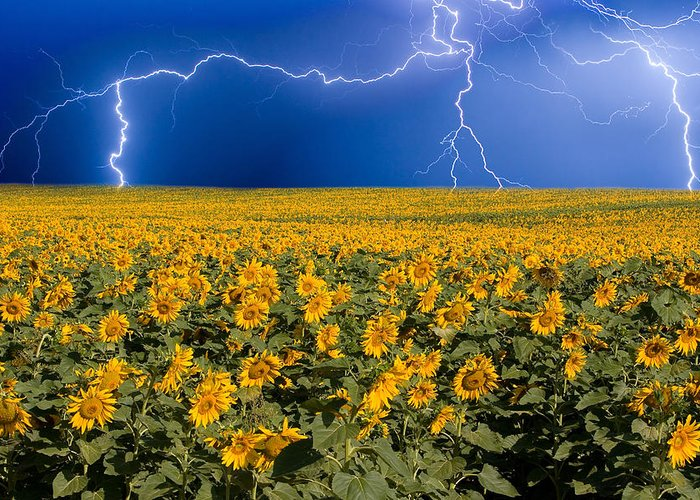 Thunderstorm Greeting Cards