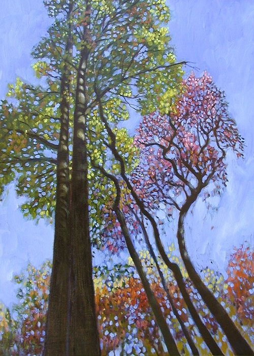 Fall Trees Highlighted By The Sun Greeting Card featuring the painting Sunlight On Upper Branches by John Lautermilch