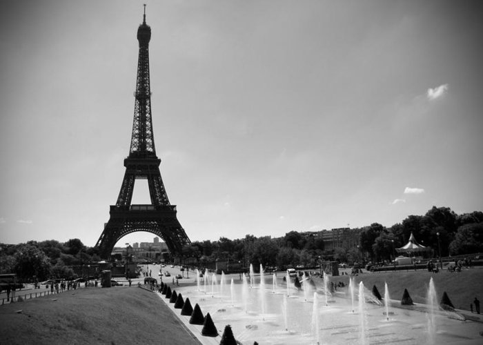 Sunny Day In Paris Greeting Card featuring the photograph Sunny Day In Paris by Kamil Swiatek