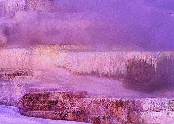 North America Greeting Card featuring the photograph Sunrise At Minerva Springs Yellowstone National Park by Dave Welling