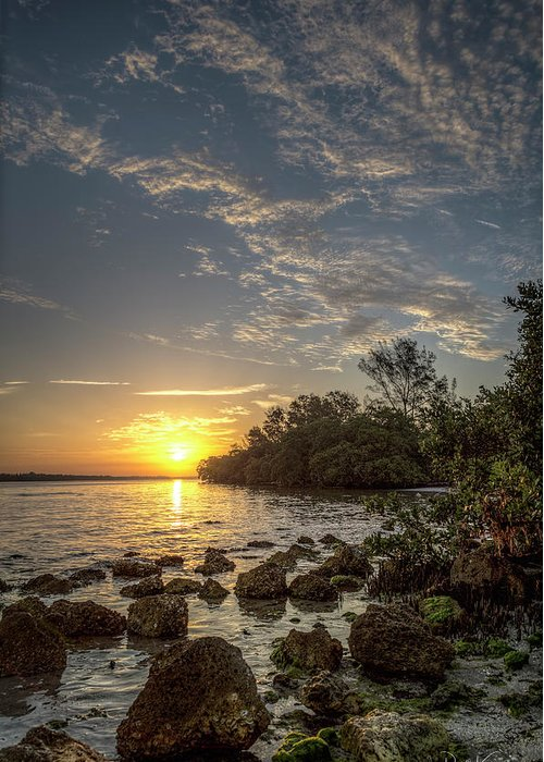 Sunrise Greeting Card featuring the photograph Sunrise At The Sunshine Skyway by Ronald Kotinsky