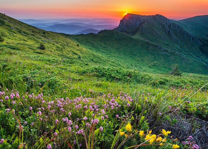 Balkan Mountains Greeting Card featuring the photograph Sunrise Behind Goat Wall by Evgeni Dinev