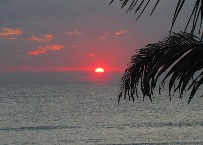 Sunrise Greeting Card featuring the photograph Sunrise Florida by Don Howard