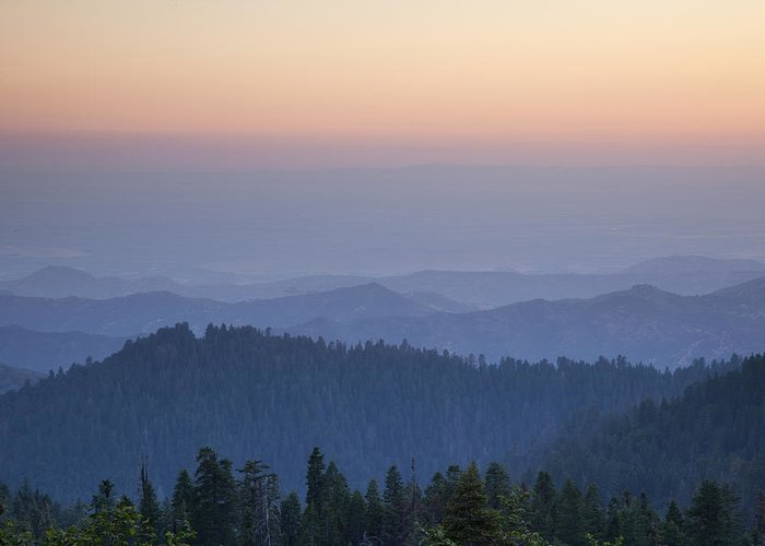 Sequoia National Park Greeting Card featuring the photograph Sunrise Of Sequoia by Rick Pham