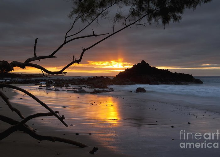 Hawaii Greeting Card featuring the photograph Sunset At Beach 69 - Hawaii by Charmian Vistaunet
