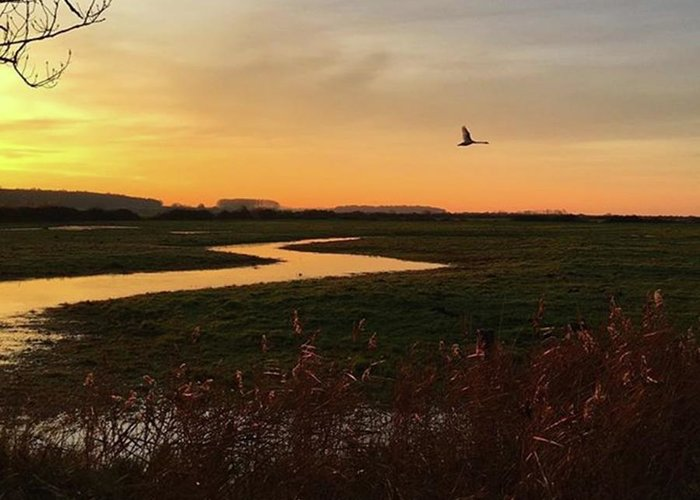 Natureonly Greeting Card featuring the photograph Sunset At Holkham Today  #landscape by John Edwards
