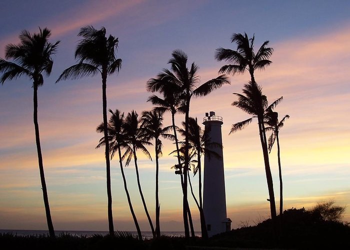 Palm Trees Greeting Card featuring the photograph Sunset by Dawn Marie Black
