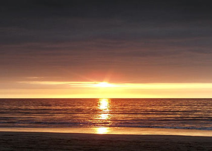 Sunset Greeting Card featuring the photograph Sunset by Gina De Gorna