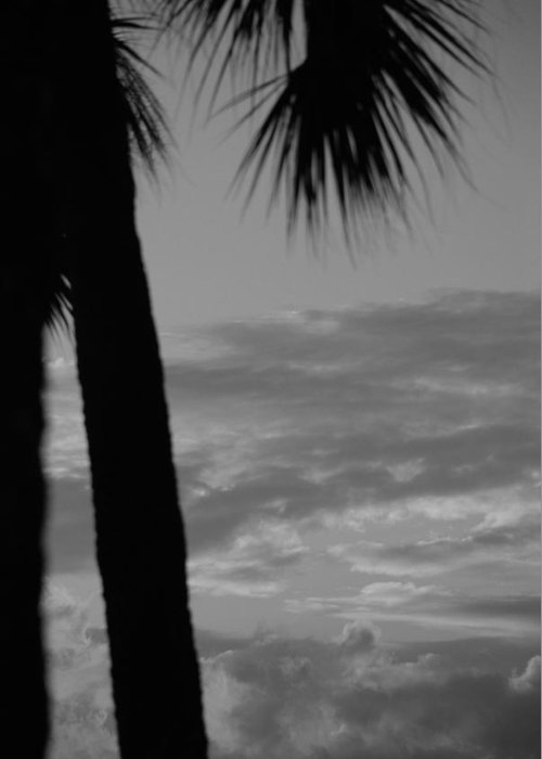 Black And White Greeting Card featuring the photograph Sunset In Black And White by Rob Hans