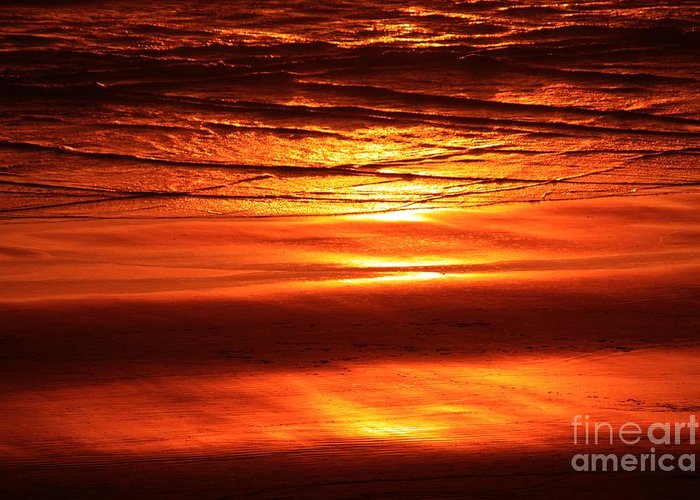 Sunset Greeting Card featuring the photograph Sunset In The Sand by Erica Hanel