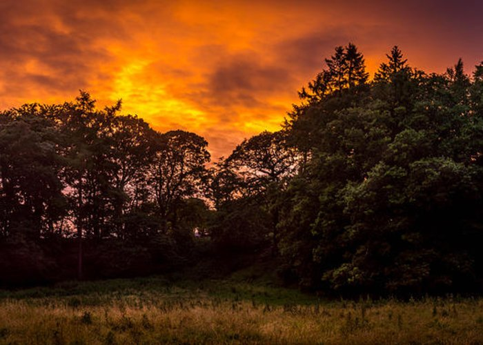 Sunset Greeting Card featuring the photograph Sunset In The Shire by Dale Holden