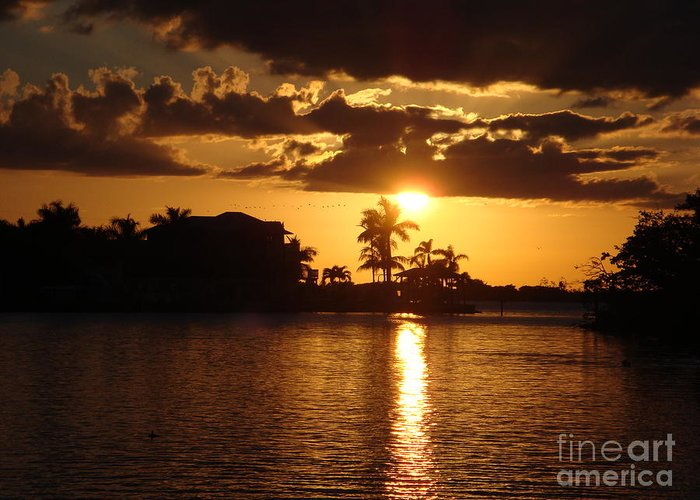 Sunset Greeting Card featuring the photograph Sunset On The Bay by Robyn Leakey
