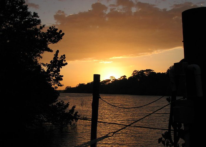 Sunset Greeting Card featuring the photograph Sunset On The Dock II by April Camenisch