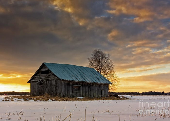Copy Space Greeting Card featuring the photograph Sunset On The Snowy Fields by Jukka Heinovirta