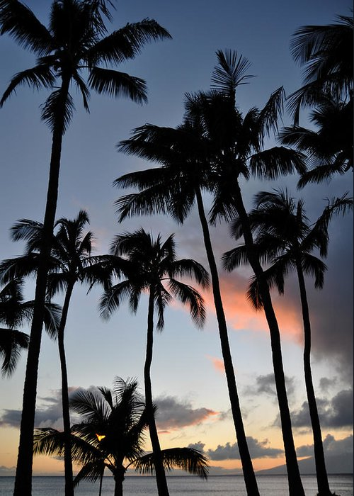 Sunset Palms Napili Bay Maui Hawaii Silhouettes Landscape Greeting Card featuring the photograph Sunset Palms by Kelly Wade