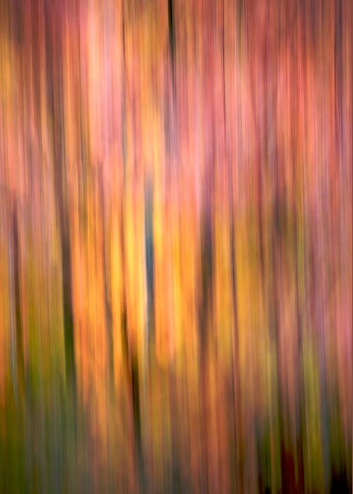 Abstract Greeting Card featuring the photograph Sunset Pond Trail 3 by Julius Reque