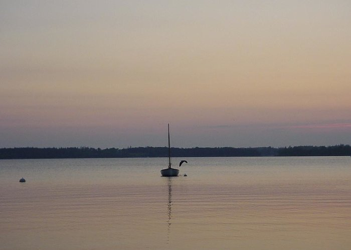 Maine Greeting Card featuring the photograph Sunset Sailing by Kelly Mezzapelle