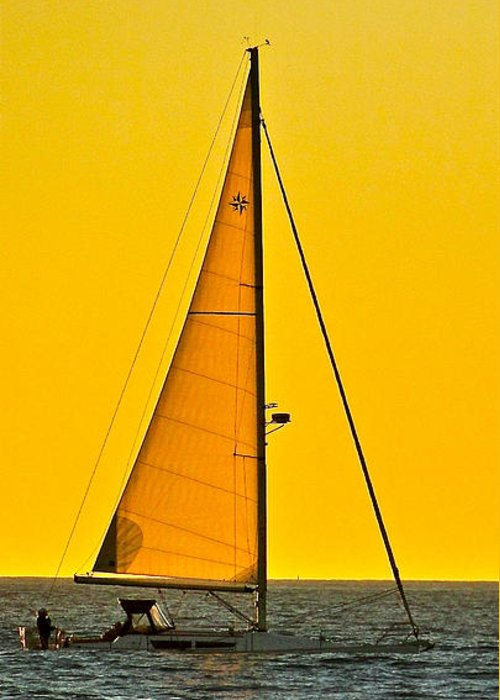 Sailing Greeting Card featuring the photograph Sunset Sailing by Liz Vernand
