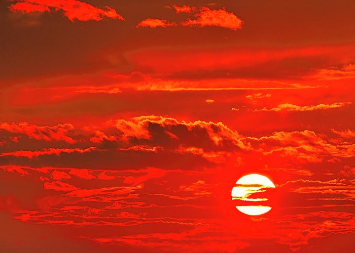 Sunset Greeting Card featuring the photograph Sunset by Tony Beck