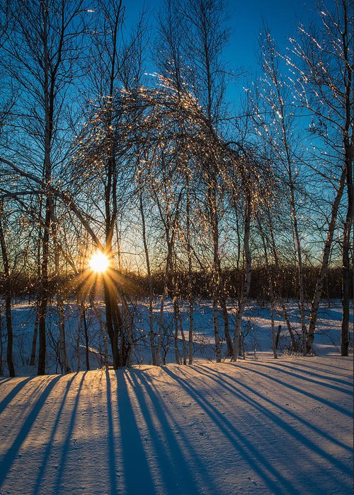 Winter Greeting Card featuring the photograph Sunset Winter Shadows by Alex Papp