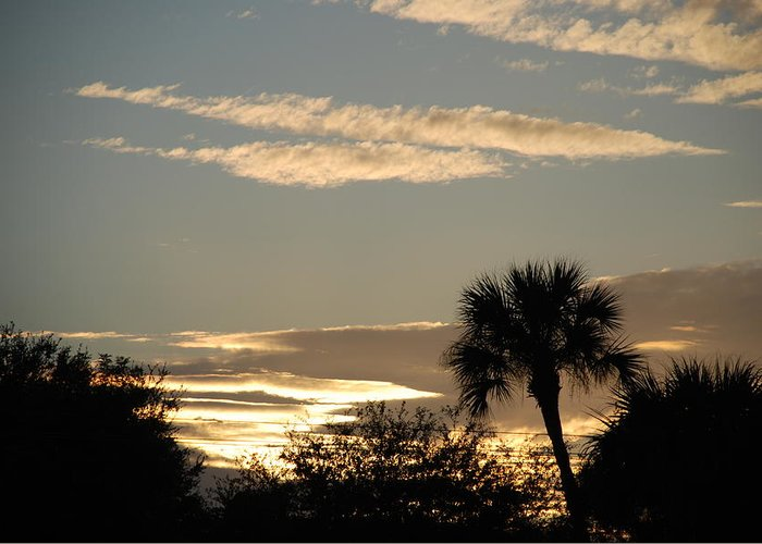 Clouds Palm Trees Greeting Card featuring the photograph Sunsets In The West by Rob Hans