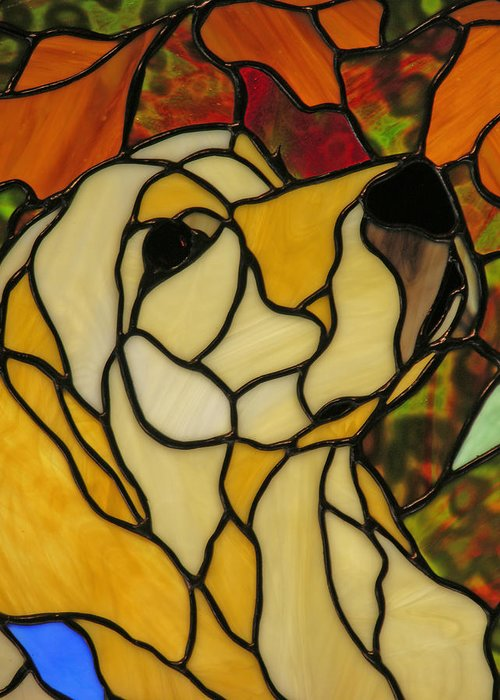 Stained Glass Greeting Card featuring the photograph Sunshine by Ladonna Idell