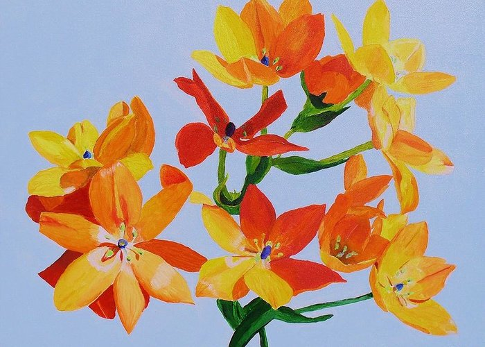 Flowers Greeting Card featuring the painting Sunstar by Rodney Campbell