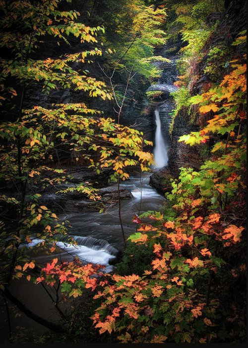 Ithaca Greeting Card featuring the photograph Surrounded By Fall by Neil Shapiro