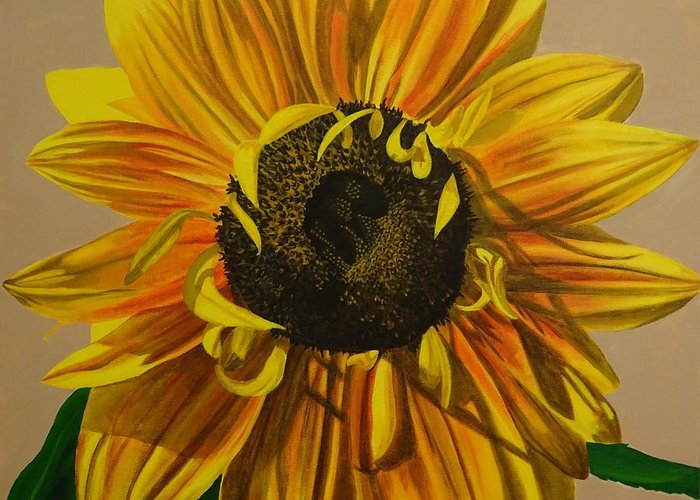 Shading On Flowers Greeting Cards
