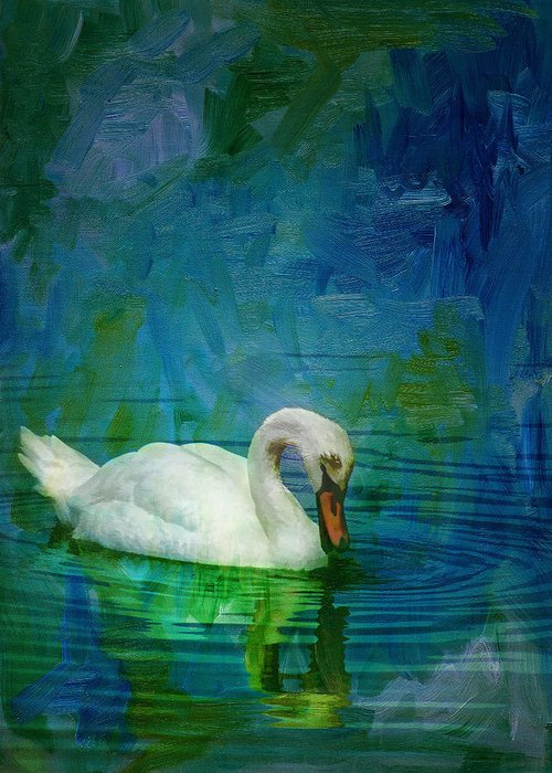 Swan Greeting Card featuring the photograph Swan On A Blue And Green Lake by Mitch Spence