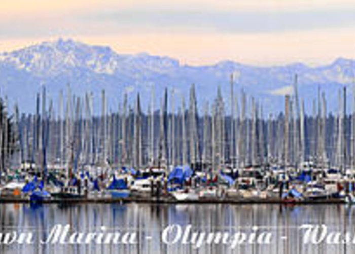 Landscape Greeting Card featuring the photograph Swantown Marina Olympia Wa by Larry Keahey