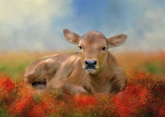 Animal Greeting Card featuring the photograph Sweet Baby by Lana Trussell