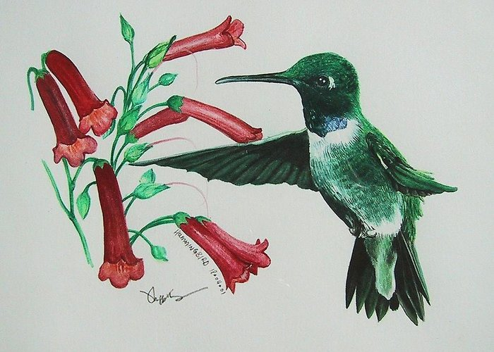 Hummingbird Greeting Card featuring the painting Sweet Treat by Richard Ong