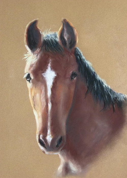 Horse Greeting Card featuring the painting Sweetie by Carol Mueller