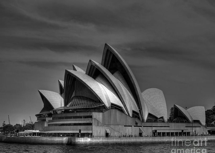 Sydney Greeting Card featuring the photograph Sydney Opera House Print Image In Black And White by Chris Smith