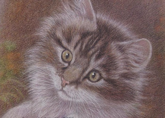 Greeting Card featuring the painting Tabby Kitten by Dorothy Coatsworth
