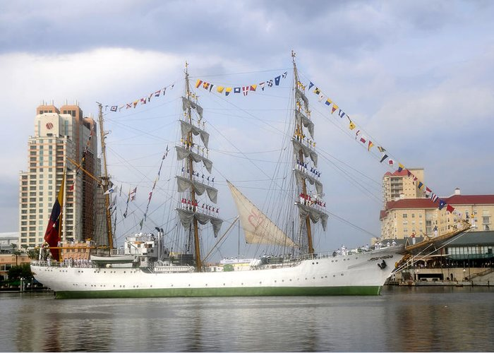 Tampa Bay Florida Greeting Card featuring the photograph Tall Ship In Tampa Bay by David Lee Thompson