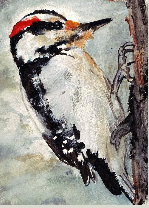 Hairy Woodpecker Greeting Card featuring the painting Tappity Tap by Debra Sandstrom