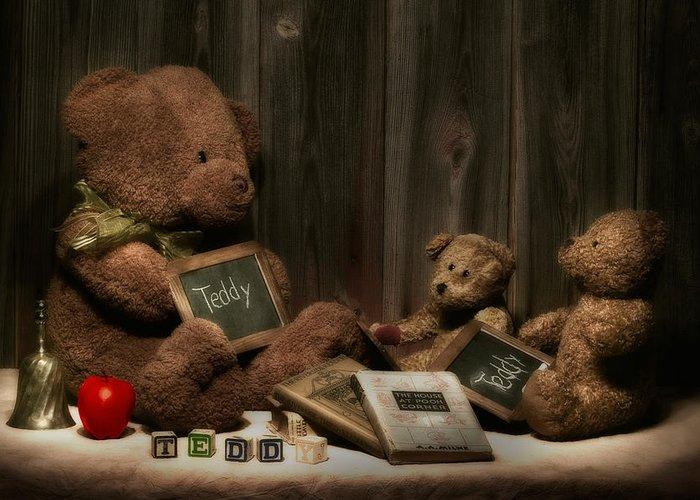 Stuffed Animal Greeting Cards