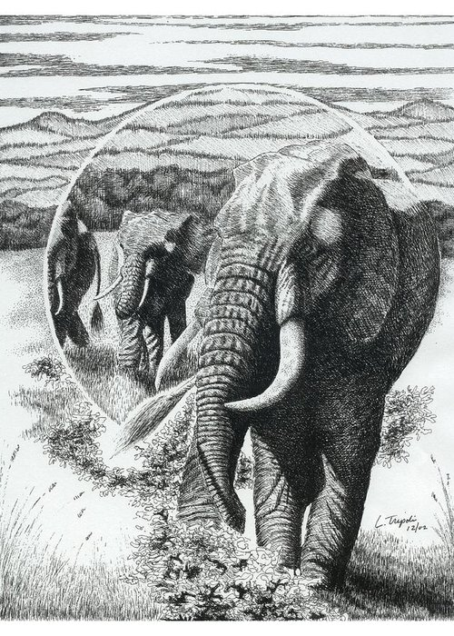 Wildlife Greeting Card featuring the drawing Telephoto by Lawrence Tripoli