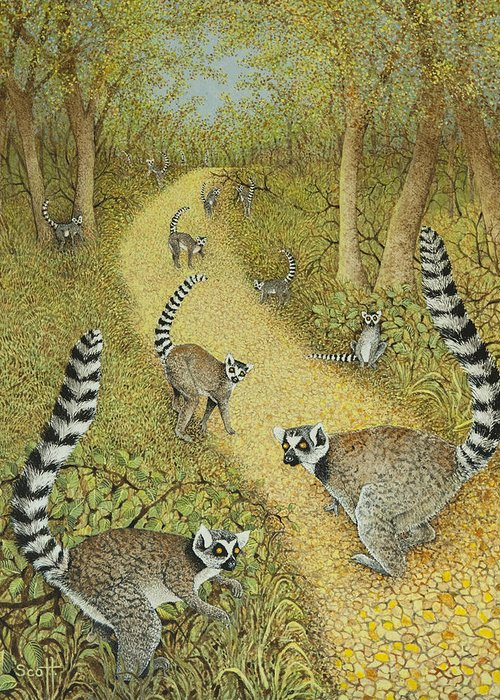 Lemur Greeting Cards
