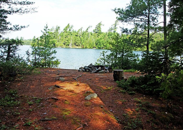Temagami Island Greeting Card featuring the photograph Temagami Island Campsite I by Debbie Oppermann