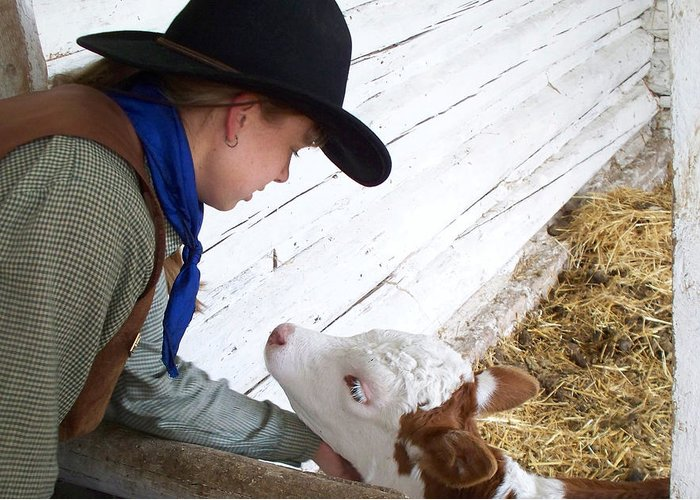 Calves Greeting Card featuring the photograph Tender Moment by FeVa Fotos
