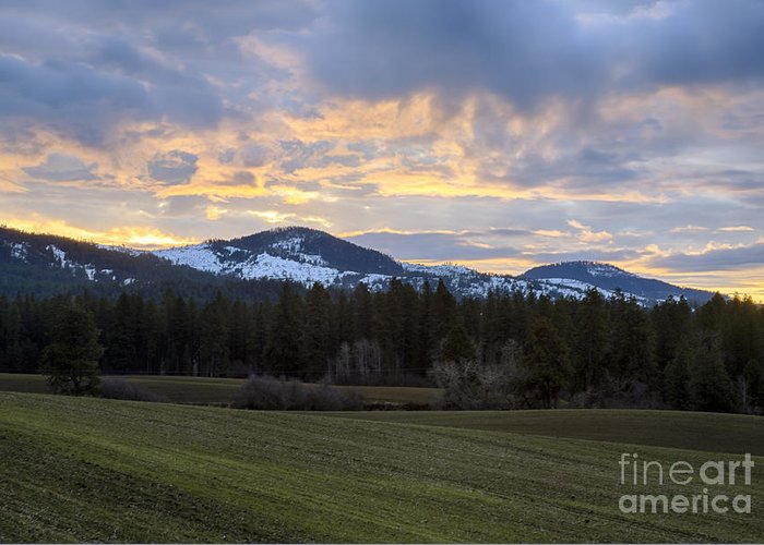 Benewah County Greeting Card featuring the photograph Tensed Dawn by Idaho Scenic Images Linda Lantzy