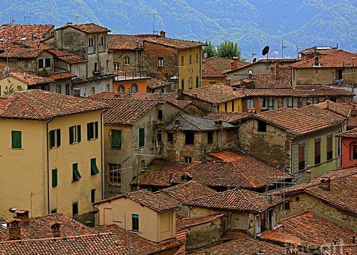 Town Greeting Card featuring the photograph Terra-cotta Roofs Barga Vecchia Italy by Nicola Fiscarelli