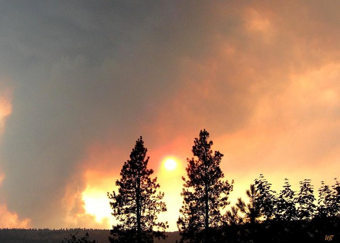 Forest Fire Greeting Card featuring the photograph Terrace Mountain Fire 2 by Will Borden