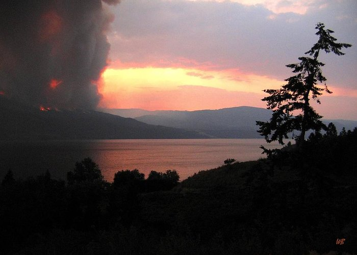 Forest Fire Greeting Card featuring the photograph Terrace Mountain Fire 4 by Will Borden